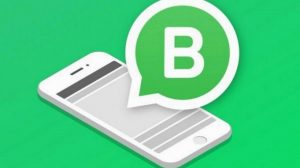 Whatsapp-Business-two whtatsapp number