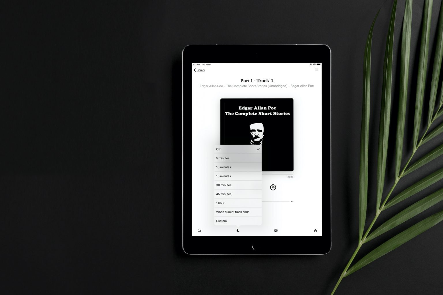 Apple Book Sleep Timer