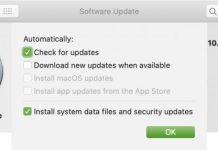 Disable Automatic Software Update