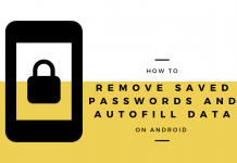 Remove Saved Password & Autofill Data