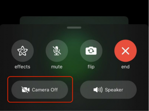 Move From FaceTime Audio to FaceTime Video