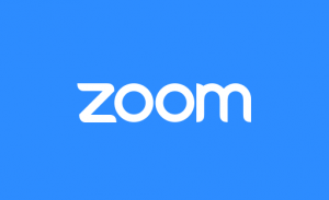 Fix Zoom Error
