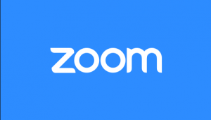 Zoom Extensions For Google