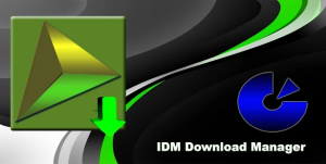 IDM For PC