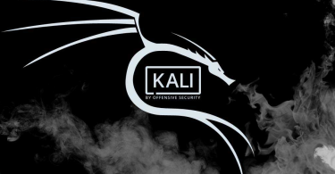 kali linux commands pdf